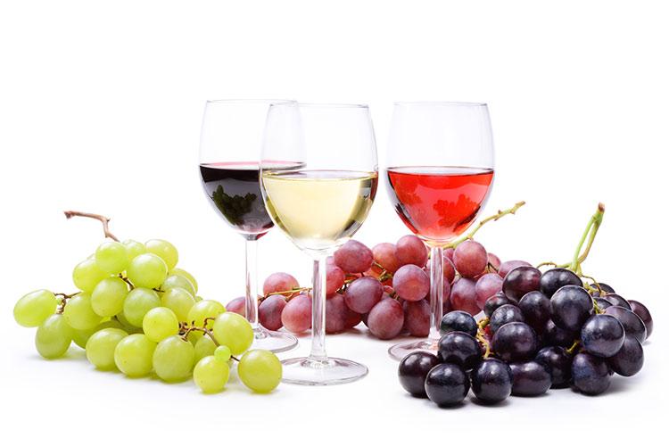 vendita vino spumante